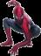 Spiderman's picture